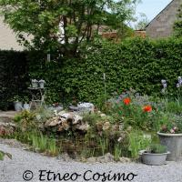 Millen-Riemst_Waterburchtgebied_Waterburcht